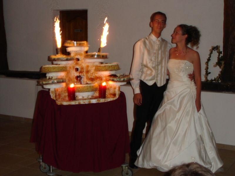 Blog mariage aline et guillaume mariage le 19 juillet 2008 - Presentoire gateau mariage ...